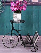 LQC Kreative Eisen Fahrrad Blume Rack Einfache Multilayer Leiter Blume Rack Balkon Boden Pflanzer Regal Einfache Modern Living Room Indoor Flower Rack Anzeige ( farbe : B )