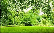 Lqwx Luxus Tapete Grüne Gras Landschaft Anpassen 3D Wandbilder Tapeten Home Decor Wohnzimmer Wallpaper Moderne 300Cmx210Cm