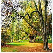 Lqwx Neue Wallpaper mit bloßem Auge 3d-kanadischen Wälder Herbst schöne Aussicht im Europäischen Stil Hintergrund papel de Parede 3d Wallpaper 250 cmX 175 cm
