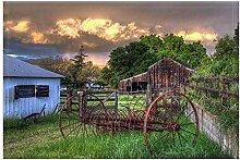 LRSJD Land Bauernhaus Bad Teppiche Vintage Western