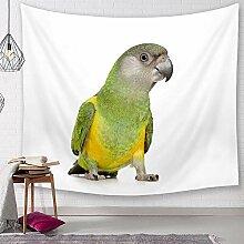Ludage Wohnteppich Cartoon Papagei Tapete Drucken