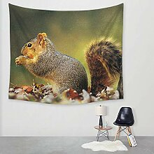 Ludage Wohnteppich Eichhörnchen Druck Tapete Wand