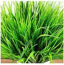 lujiaoshout Green Grass Künstliche Pflanzen