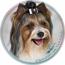 LUKKA Biewer Yorkshire Terrier Aufkleber 15 cm