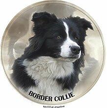 LUKKA Border Collie Aufkleber 25 cm