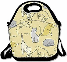 Lunch Bag Tote Boxes Bags Lunch Box Cat Lunch