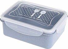 Lunchbox, Bento Box, Kühlschrank,