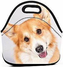 Lunchpaket-Box Cute Smile Welsh Corgi Hund