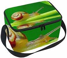 Lunchtasche Schnecke auf grünem Blatt Garten Pool