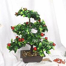 LUOXIRZZW Obstbaum Bonsai Dekoration Dekoration