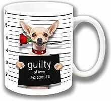 Lustig Beige Chihuahua 'Schuldig der