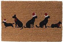 lustige Kokos Fussmatte Hund oder Katze mit