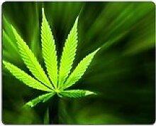 luxlady Gaming Mousepad Bild-ID: 24932891Young Cannabis Pflanze Marijuana Pflanze Detail