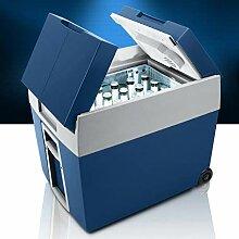 LYJ Auto Kühlschrank 48L 12V Kühlbox Isoliert