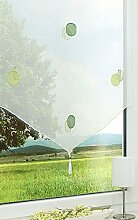 LYSEL Scheibengardine Applegreen (BX H) 60cm *