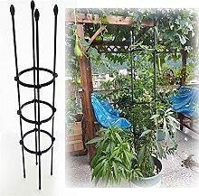 LZPQ Metall Obelisk, Rankgerüst Kletterpflanzen,