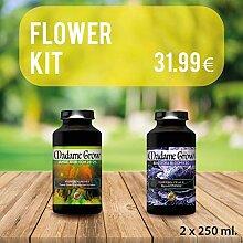 MADAME GROW ⭐️⭐️⭐️⭐️⭐️ Flower
