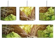 Mächtiger Baum im Wald inkl. Lampenfassung E27,