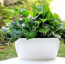 magebao Garten-Originalität Wasser Aufbewahrung und automatischen Bewässerung, Blumentöpfe, weiß, Pflanztopf grün Pflanzen & # x3001; Sukkulente Übertopf Halterung, grün, Small-6.1in.Lx 3.54in.W x 4.33in.H