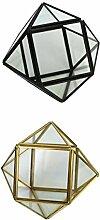 MagiDeal 2 Stk. Glasterrarium Geometrisches Glas