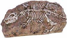MagiDeal Dinosaurier Schädelprofil Skelett