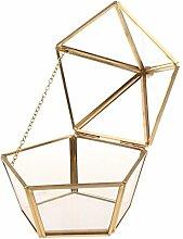 MagiDeal Geometrisches Glas Terrarium Box Glas