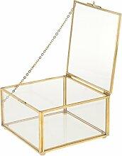 MagiDeal Geometrisches Glas Terrarium Box