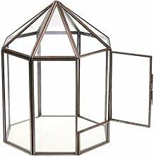 MagiDeal Haus Form Geometrisches Glas Terrarium
