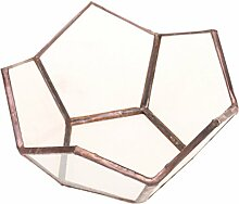 MagiDeal Offenes Geometrisches Glas Terrarium Box