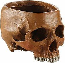 MagiDeal Resin Schädel Party Bar Prop Blumentopf Pflanzer für Sammlung Anatomie Didaktik Dekor