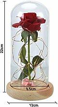 Magische Rose Led Nachtlicht Ewige Laterne