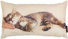 Magma Kissen Ca. 30x50 CM Mit Digitaldruck Tierwelt Katze