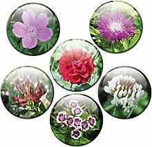 Magnete Blumen für Glasmagnettafel Extra Stark
