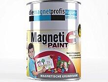 Magnetfarbe,extreme Haftkraft, allergikerfreundliche Wandfarbe für Innenräume,ohne Konservierungsmittel grau, 2 Liter + 5 Magnete