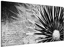 Magnettafel Pusteblume Schwarz & Weiß Memoboard