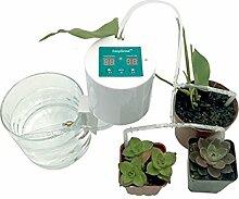 Mahhala Selbstbewässerungssystem, automatische