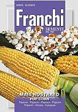 Maissamen - Mais Rostrato Popcorn von Franchi Sementi