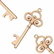 Makhry 50 Stücke Vintage Skelett Schlüssel