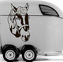 malango® Autoaufkleber Pferdekopf Aufkleber Sticker Tier Pferd Kopf Design Styling Dekoration Szene Tuning 30 x 52 cm türkis türkis 30 x 52 cm