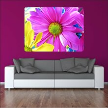malango® Wandbild Bunte Gänseblümchen Aufkleber Wandaufkleber Styling Design Dekoration 80 x 106 cm digitalgedruckt digitalgedruckt 80 x 106 cm