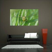 malango® Wandbild Insekt Libelle Aufkleber Wandaufkleber Sticker Design Styling Dekoration Raum Tier 60 x 103 cm digitalgedruckt digitalgedruckt 60 x 103 cm