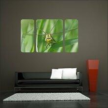 malango® Wandbild Insekt Libelle Aufkleber