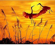 Malen Nach Zahlen Flamingo bei Sonnenuntergang