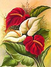 Malen nach Zahlen Kunst Pflanze Calla Digitales