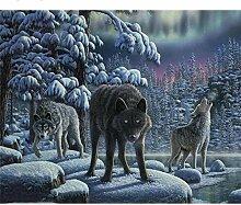 Malen Nach Zahlen Schnee Wolf Wandfarbe Bilder Diy