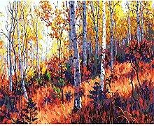 Malen Nach Zahlen Sonnenuntergang Birkenwald Malen