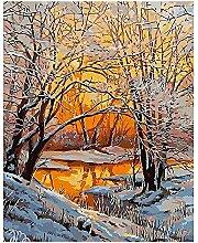 Malen Nach Zahlen Sonnenuntergang Schneewälder