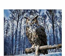Malen Nach Zahlen Tiere Winter Wald Eule Acryl