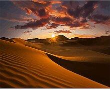 Malen Nach Zahlen Wüste im Sonnenuntergang Malen