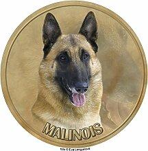Malinois - Belgischer Schäferhund Aufkleber 25 cm